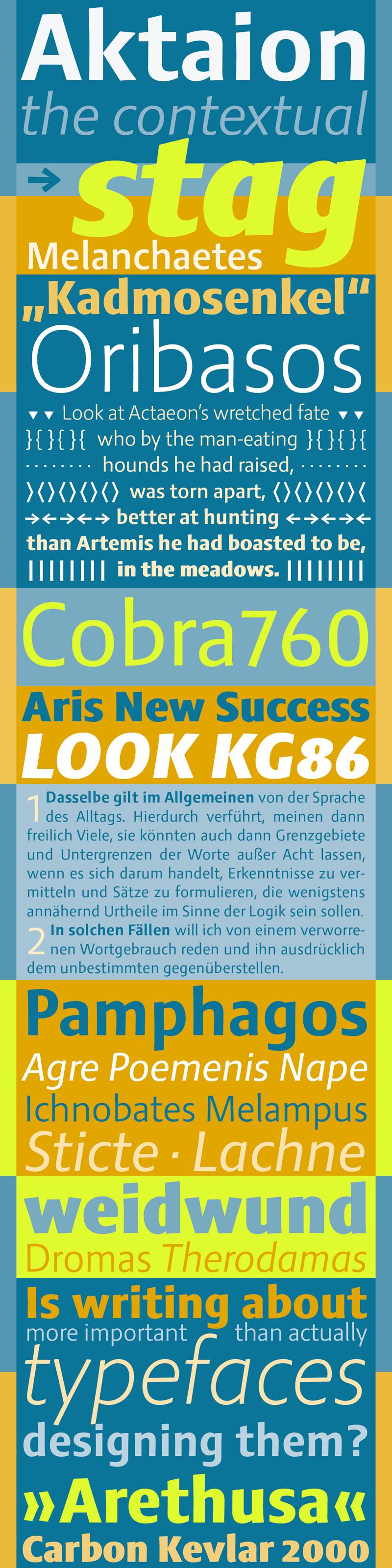 Aktaion font by Jürgen Weltin type matters Pullach