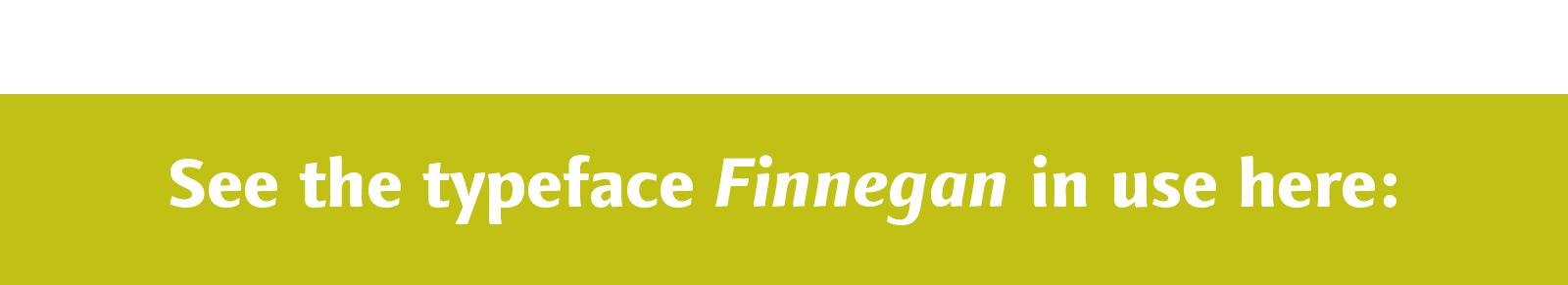 Finnegan in use