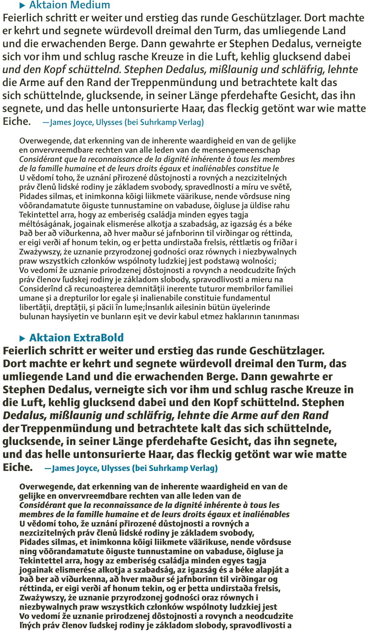 Aktaion fonts by Jürgen Weltin type matters text samples specimen